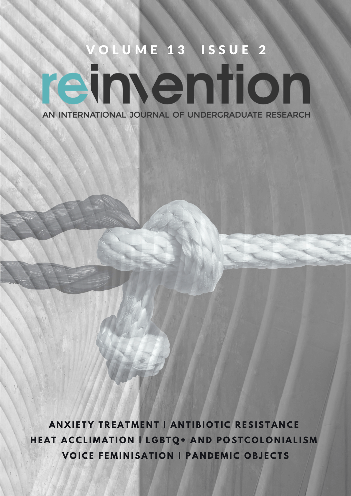 Reinvention journal volume 13 issue 2 cover